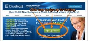 bluehost-hosting-1-548x258